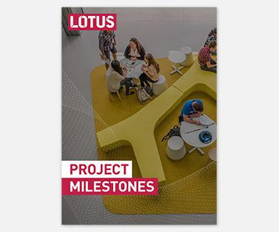 Project Milestones Doc